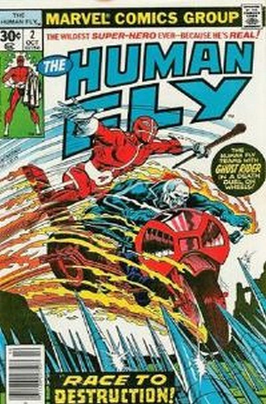 Cover of Human Fly (Vol 1) #2. One of 250,000 Vintage American Comics on sale from Krypton!