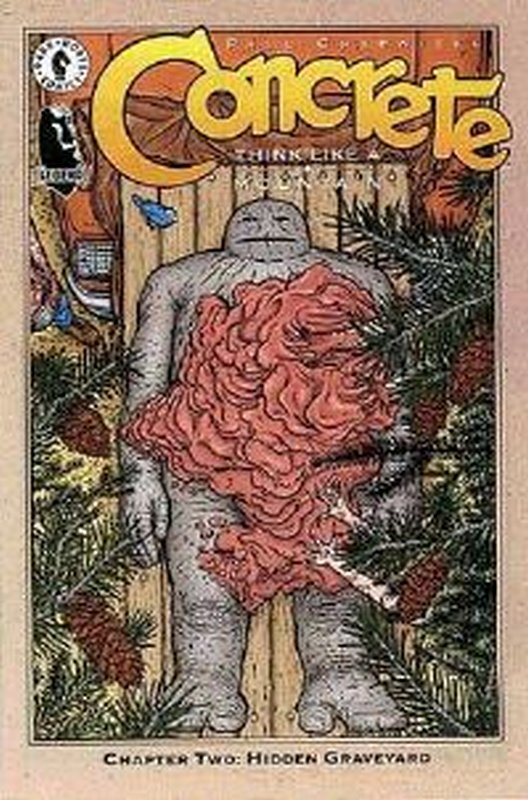 Cover of Concrete: Think Like a Mountain #2. One of 250,000 Vintage American Comics on sale from Krypton!